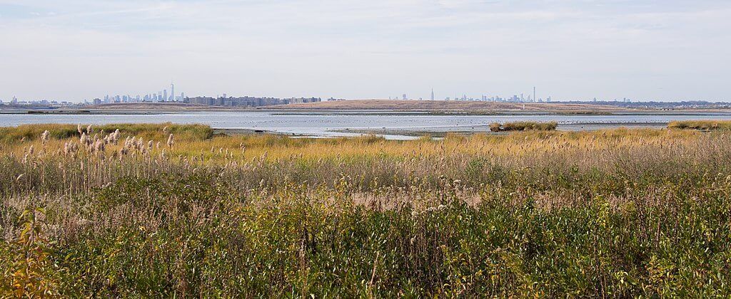 One of many things to see in Queens: Jamaica Bay Wildlife Refuge